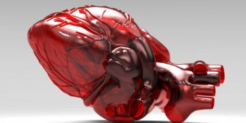 3D Bioprinting Breakthrough - Functional Heart Components Created
