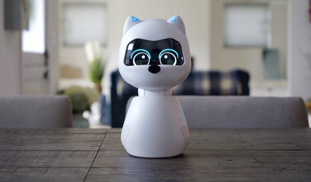 Kiki Is A Robotic Animal That Wants To Be Your Companion