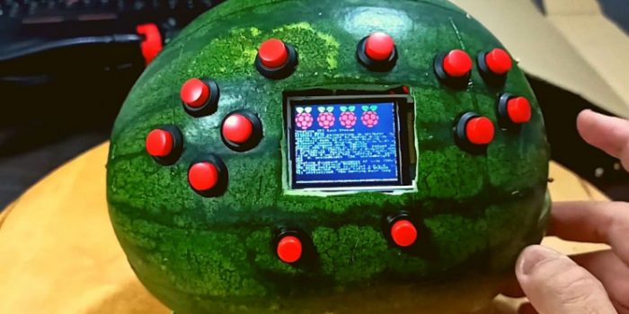 Gravity Guywatermelon Gaming